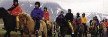 2000 Reykjavik, Island